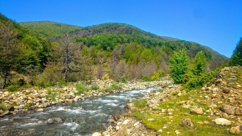 Bushtrica river | photo: Shebenik-Jabllanicë National Park