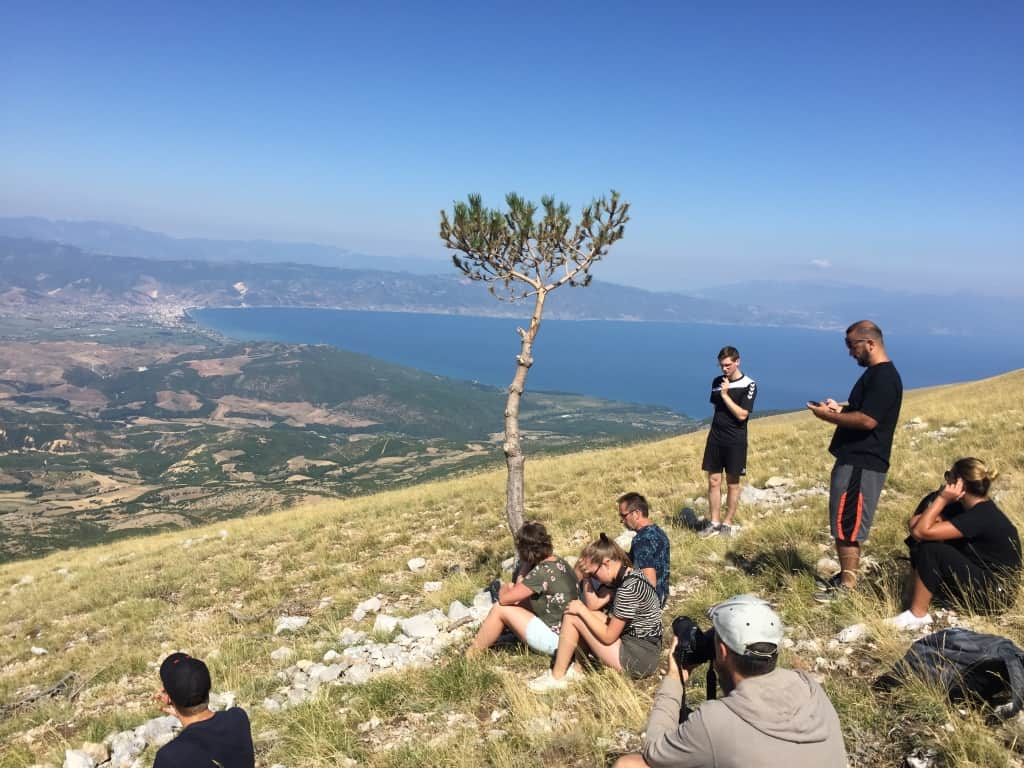 """Tree of life"" 