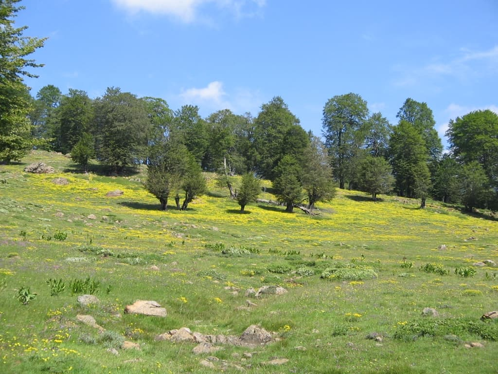 photo: Shebenik-Jabllanicë National Park