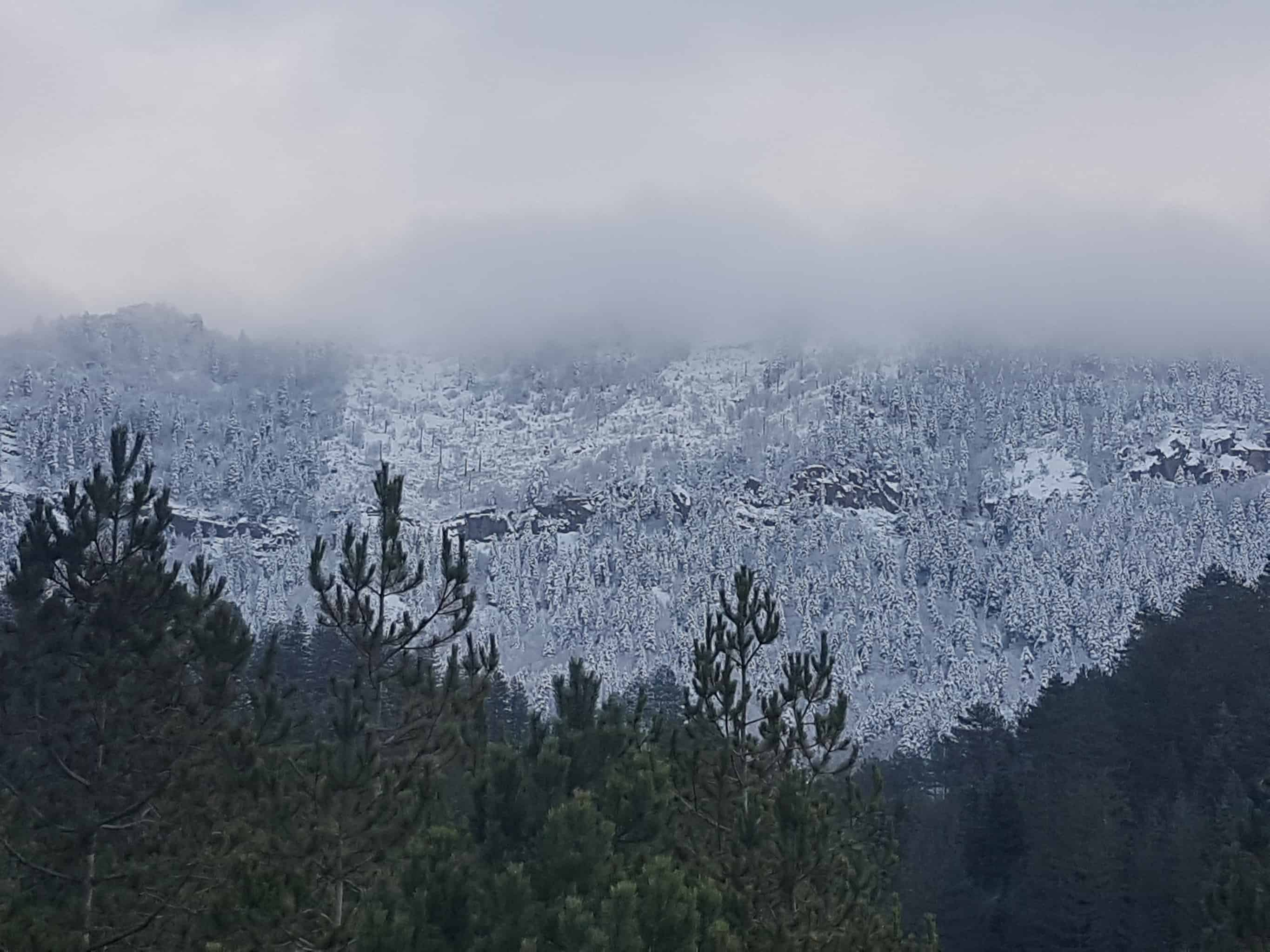 The first snow in Bredhi i Drenovës on 12th December 2019 - photo: Iljon Thanas